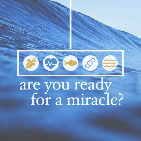 Miracle SQ
